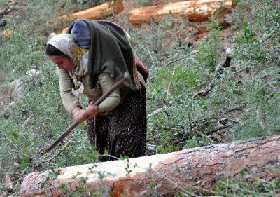 çalışan kadın köy